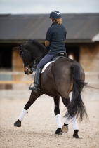 2018_KATE_COWELL_DRESSAGE-063